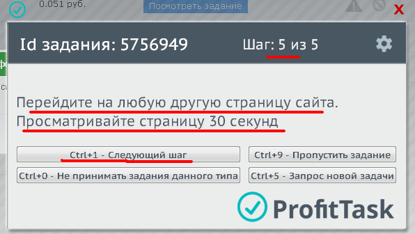 ProfitTask06