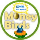 money birds регистрация